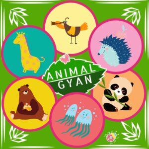 Animal Encyclopedia for Kids